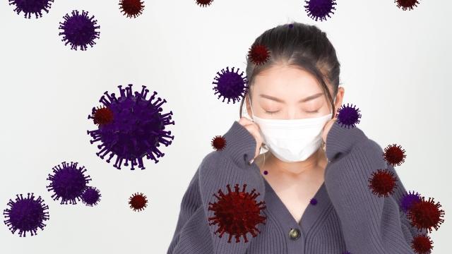 手間なし簡単ウィルス対策とは⁈